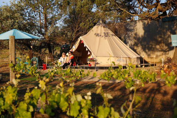Grapevine Glamping