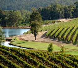 Brookhampton Estate Vineyard - Accommodation Gold Coast