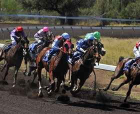 Alice Springs Turf Club - Accommodation Gold Coast